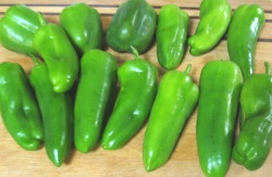 Costa Rican Sweet Peppers