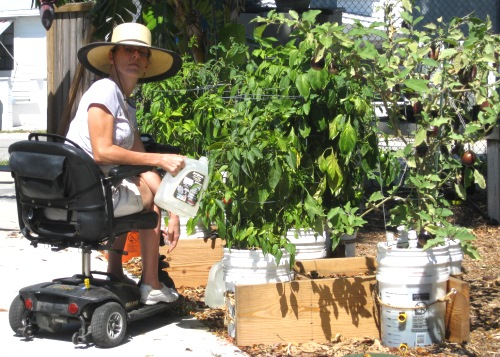 Tricia watering buckets containers at Community Garden